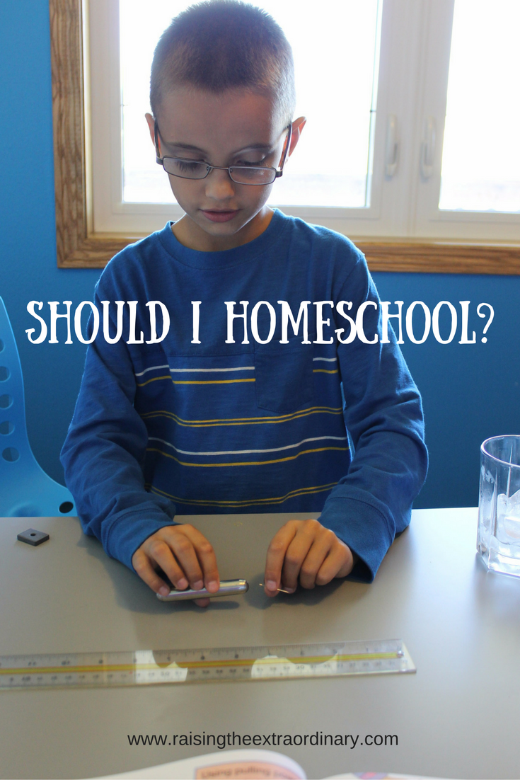 should I homeschool | how to homeschool | start homeschooling | how to start homeschooling | homeschooling consultation | homeschool consultation | reasons to homeschool